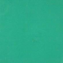 Vert 89 / F Poudre Sans Plomb