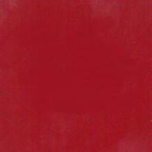 Rouge 289 Poudre