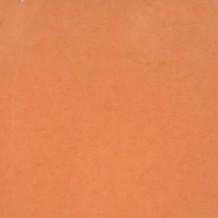 Abricot 630 Poudre