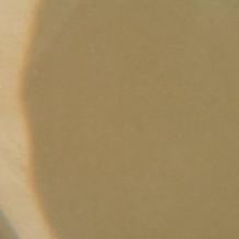 Brown 307 Powder
